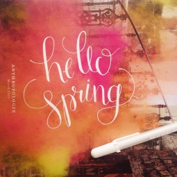 """- AMY ROCHELLE PRESS - """"Hello Spring."""" Hand lettering with white Sakura Jelly Roll on Anthropologie catalogue."""